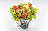 Salad Box Debrecen | Saláta 5 összetevőből + lazac | Menu24.hu